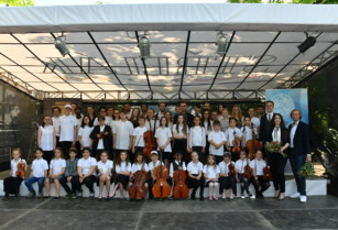 Lektor na housle